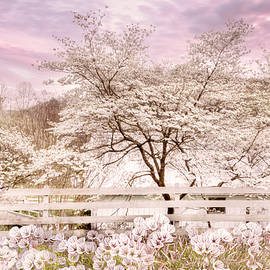 White Dogwoods along the Farmhouse Fence by Debra and Dave Vanderlaan
