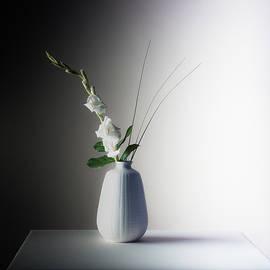 White Gladiolus no. 1 - 120 film by Bruce Davis