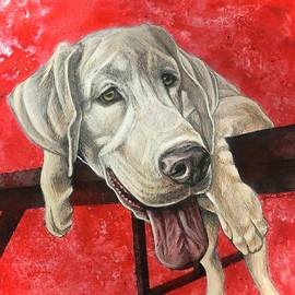 White Lab by Shari Grinnell