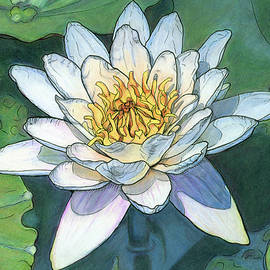 White Lotus Water Lily by Christina Kabat