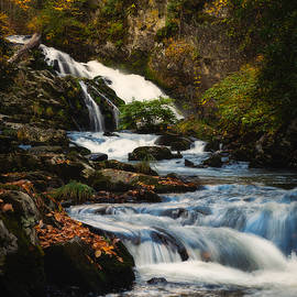 White Oak Creek Falls by Michelle Newport