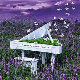 White piano in lavander field  by Mihaela Pater