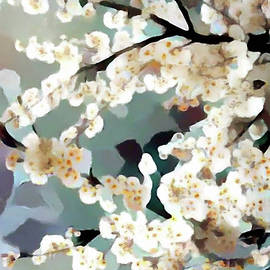 White Plum Blossoms by Susan Maxwell Schmidt