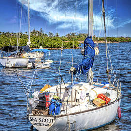 White Sailboats by the Docks by Debra and Dave Vanderlaan