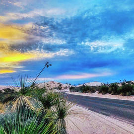 White Sands National Park at Dusk by Tatiana Travelways
