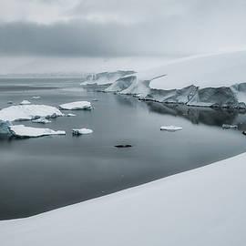 White Scenery by Jan Fijolek