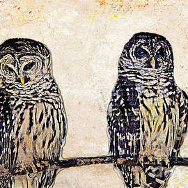 WHO Doesn't Love Two Owls On A Limb by Diann Fisher