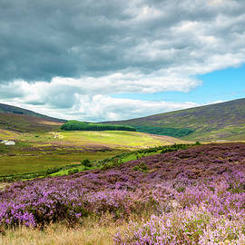 Wicklow Gap by Rob Hemphill