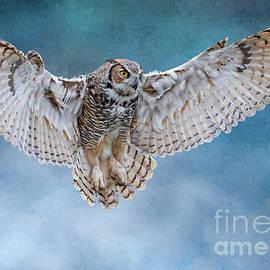 Wide Open Wings by Nina Stavlund