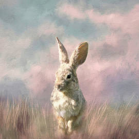 Wild Bunny in the Grass by Donna Kennedy
