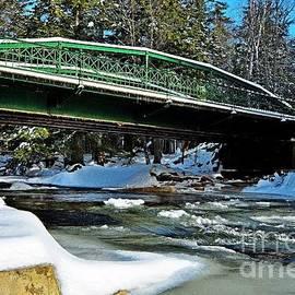 Wild Cat River Bridge  by Steve Brown