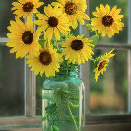 Wild Sunflowers And Sunshine by John Rogers