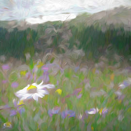 Wildflower Meadow Abstract by Francis Sullivan