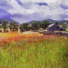 Wildflower Meadows by David Lloyd Glover