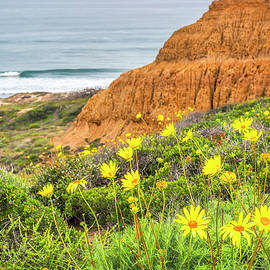 Wildflowers Smiles At Torrey by Joseph S Giacalone