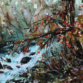 Wildwood Park Saratoga CA by Xueling Zou