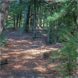 Winding Path by George Pennington
