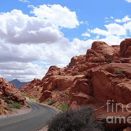 Winding Road Through Valley Of Fire  by Christiane Schulze Art And Photography