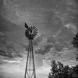 Windmill Storm Brew by Angelo Marcialis