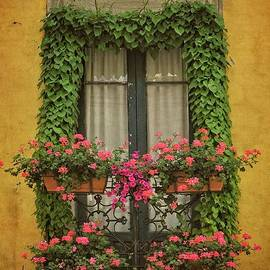 Window with Ivy and Flowers - Spain by Mary Machare