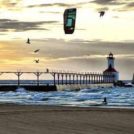 Windsailing at Sunset by Carmen Macuga