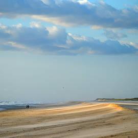 Windswept Spotlight by Dianne Cowen