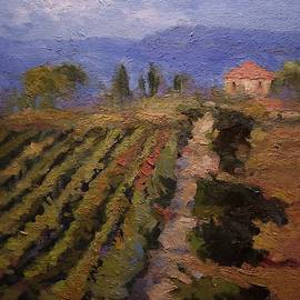 Winery in Tuscany by R W Goetting