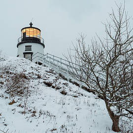 Winter Afternoon at Owls Head by Kristen Wilkinson