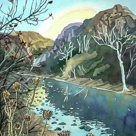 Winter Afternoon Malibu Canyon by Luisa Millicent