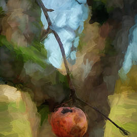 Winter Apples 004 by Mike Penney