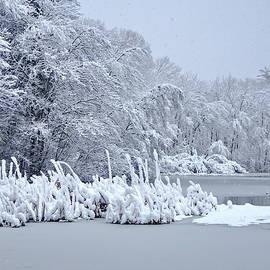Winter Art by Lyuba Filatova