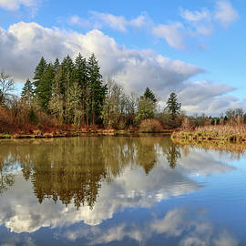 Winter at Summer Lake by Loyd Towe Photography