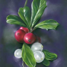 Winter Berries Holly and Mistletoe by MM Anderson