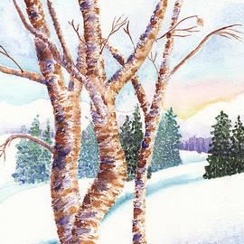 Winter Birches by Conni Schaftenaar