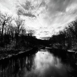 Winter Black Vertical  by Jessica Mumford