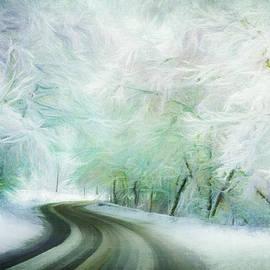 Winter Blue Path by Terry Davis