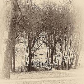 Winter Bridge 1 by Edward Peterson