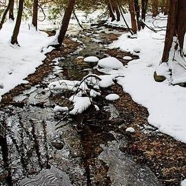 Winter Creek I by Debbie Oppermann