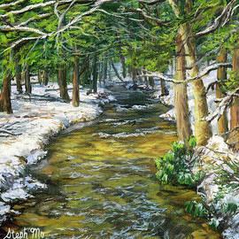 Winter Creek by Steph Moraca