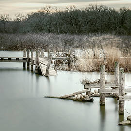 Winter Desolation by Joan Carroll