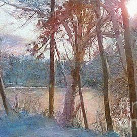 Winter Dream by Angie Braun