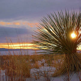 Winter Evening at White Sands by Jerry Griffin