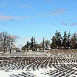 Winter Farm by Debbie Oppermann
