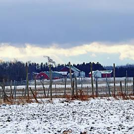 Winter Farm Scene With Snowy Owl by Debbie Oppermann