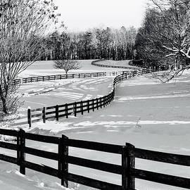 Winter Fields by Richard Perry