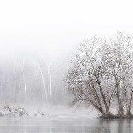 Winter Fog on the River by Francis Sullivan