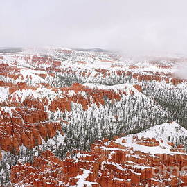 Winter Hoodoos Of Bryce Canyon by Christiane Schulze Art And Photography
