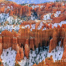 Winter in Bryce Canyon by Henk Meijer Photography