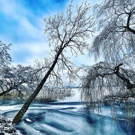 Winter in Denmark  by Colette V Hera Guggenheim