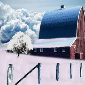 Winter in Farmland by Belinda Threeths